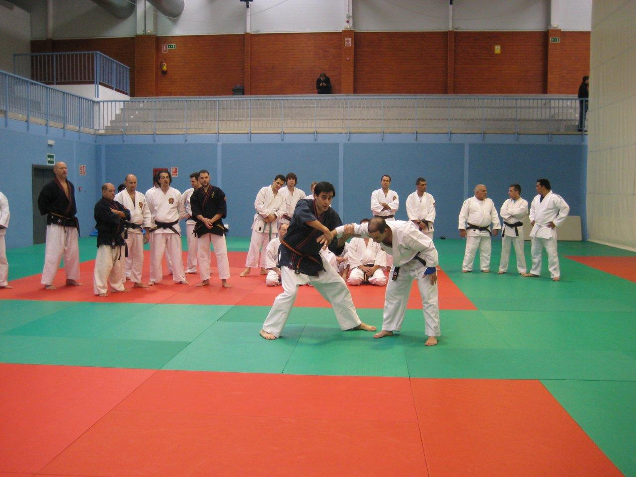 MADRID CURSO-INTERNACIONAL 2010 - 1