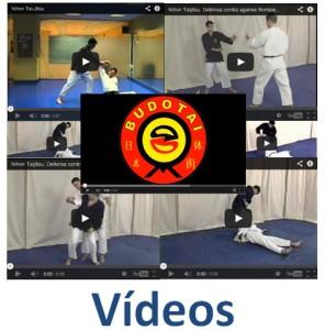 Botón vídeos